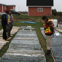 Heritage drill core being viewed by Canadian mining companies